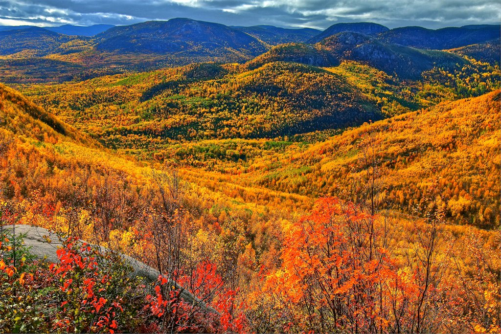 5 Places to See Fall Foliage in Canada