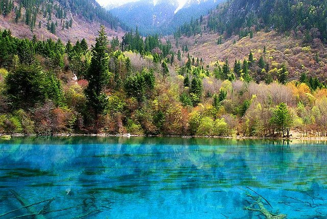 Jiuzhaigou Colorful Alpine Lakes