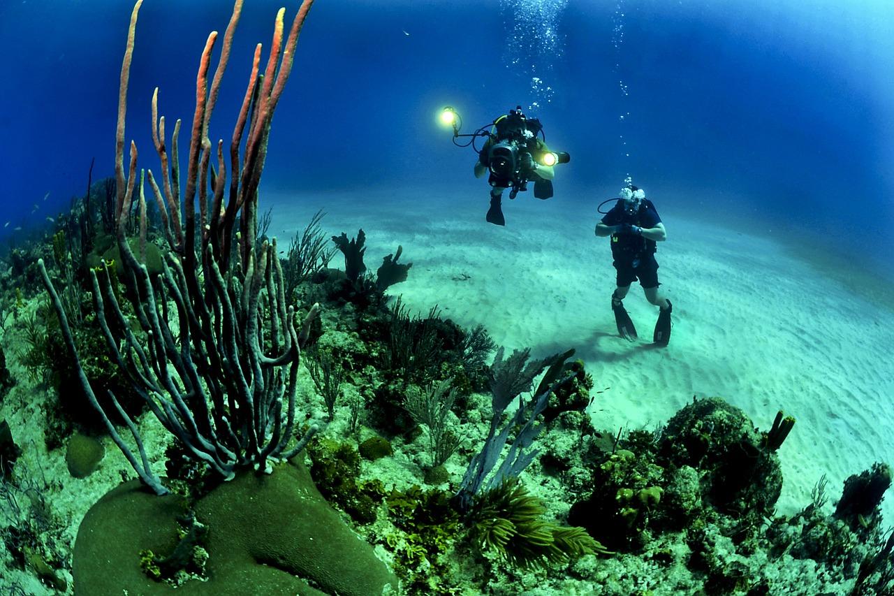 diving certificate