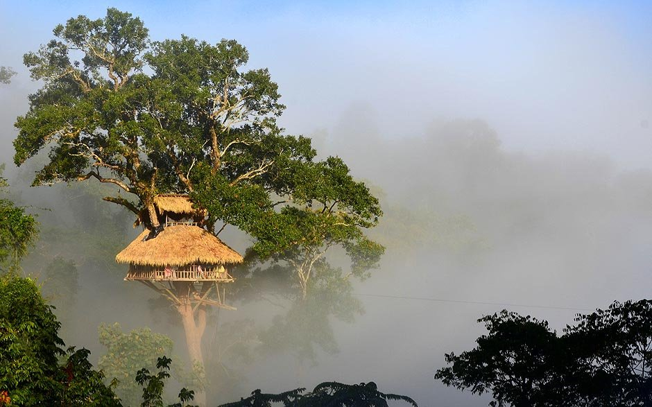8 Stunning Treehouses in Asia You Can Actually Stay In
