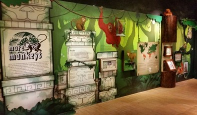 singapore philatelic museum more than monkeys exhibition