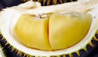 durian orchards malaysia