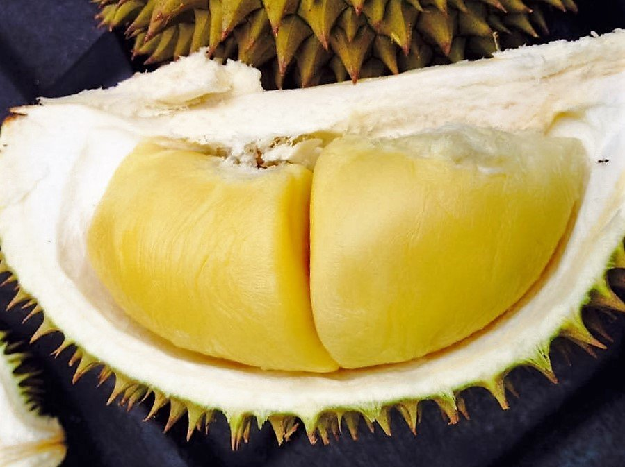 7 Must-Visit Orchards in Malaysia for the Coming Durian Season
