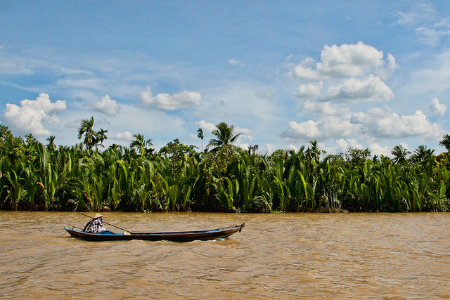 How to Explore the Mekong Delta from Ho Chi Minh City