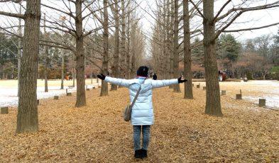 winter holiday korea