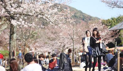 things to do in kyoto spring