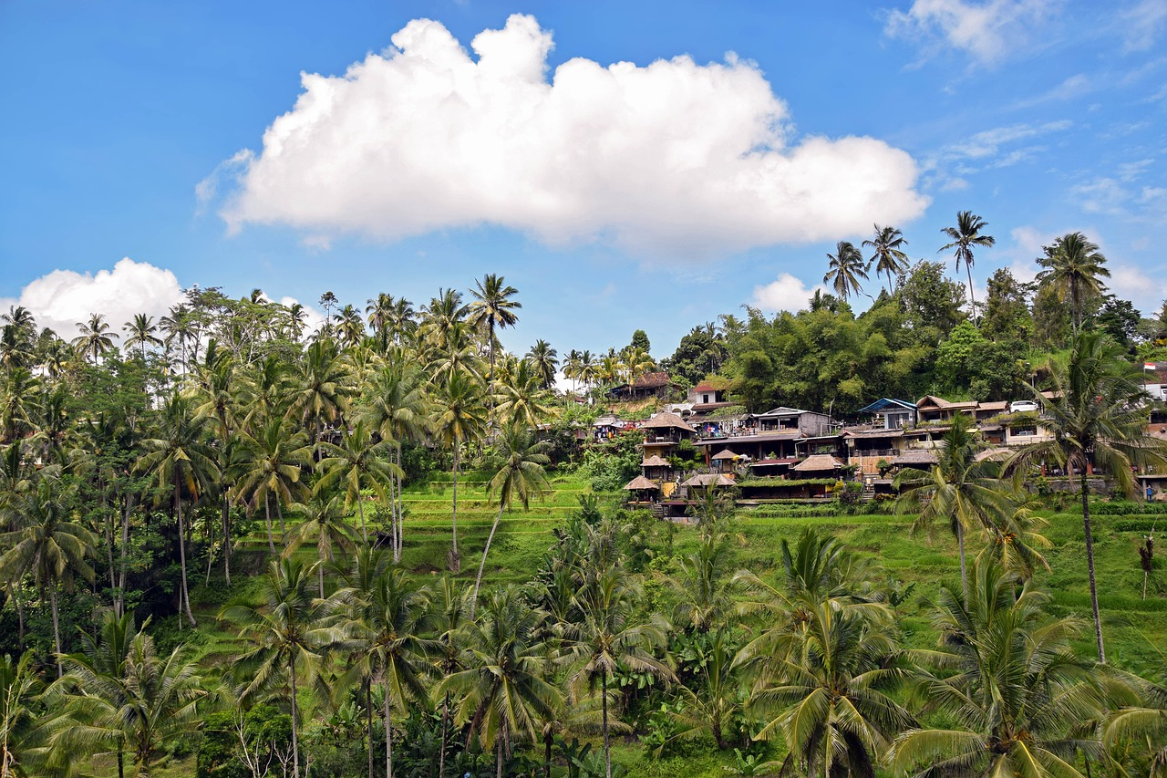 A Guide to the Best Areas to Stay in Bali